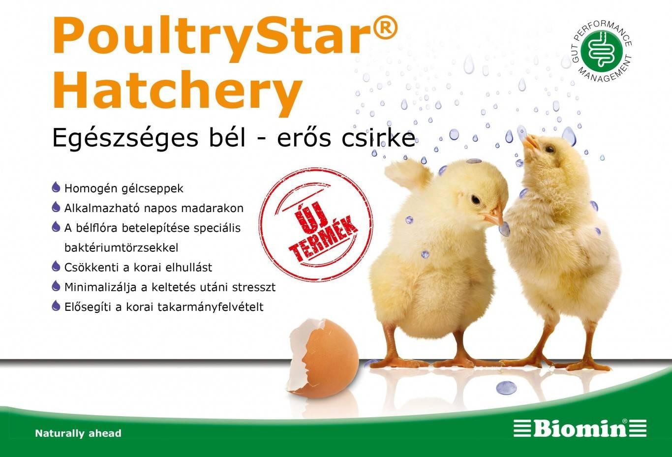 biomin-poultry-star-hatchery