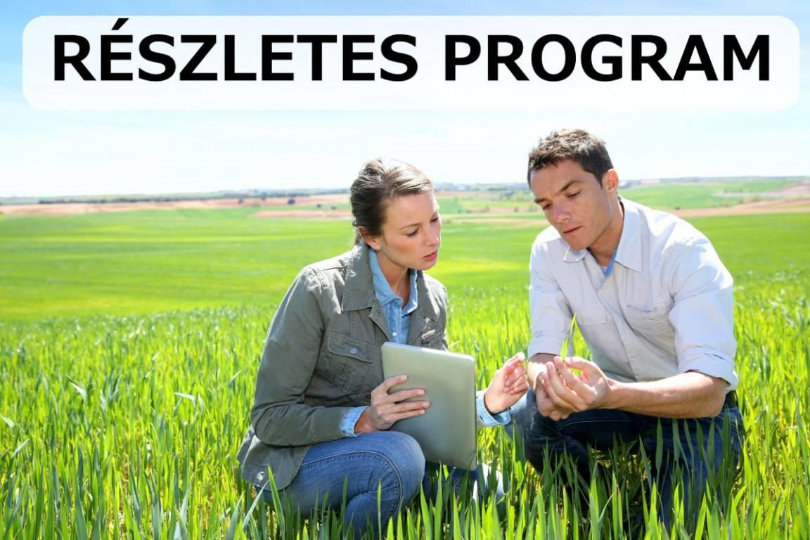 reszletes-program-
