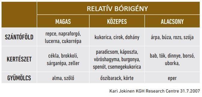 relativ-borigeny-yara-cikk