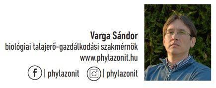 varga-sandor-phylazonit-nevjegy