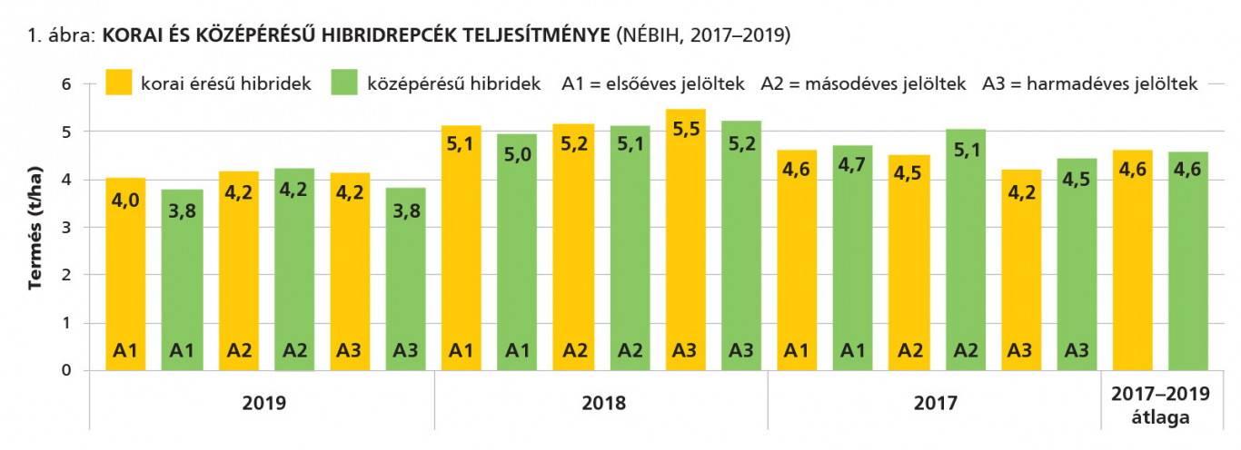 rp_betakaritas_grafikon1_2020jun
