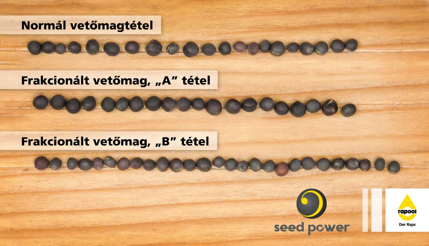 rp_seed_power_kep_2020jun