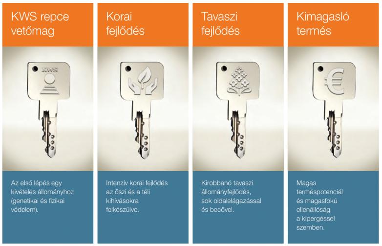 kws-repce-kulcs
