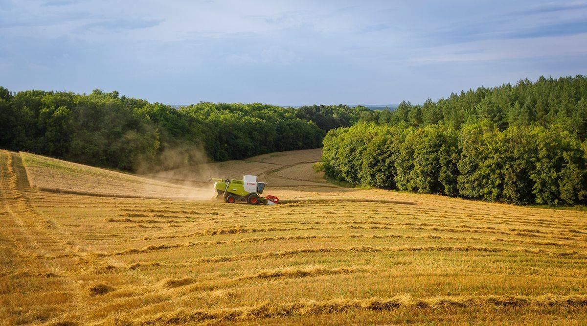 keleti-agrar-202008-_00107__1
