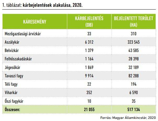 karenyhitesi-ev-2020-1