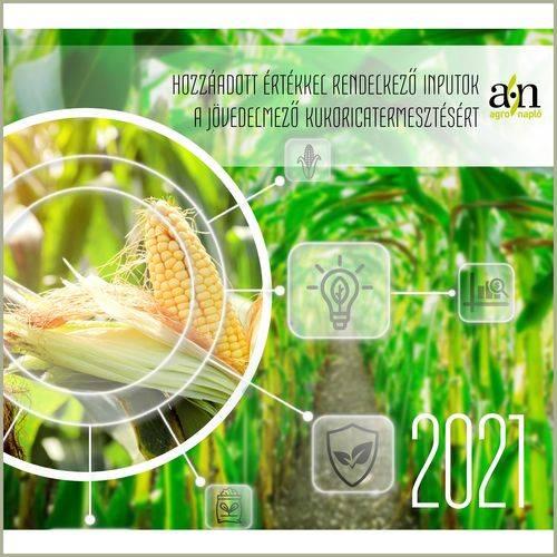 kukoricatermesztes-2020-k