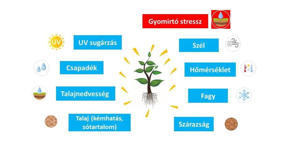fmc-abra-abiotikus stresszfaktorok