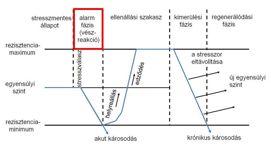 novenyi-stressz-abra