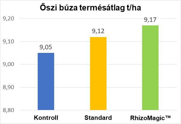 oszi-buza-termesatlag-rhizomagic