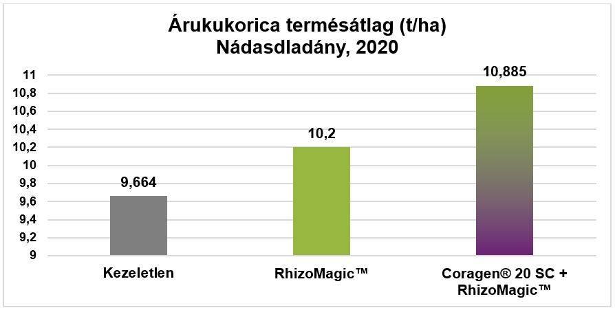 arukukorica-termesatlag-2020