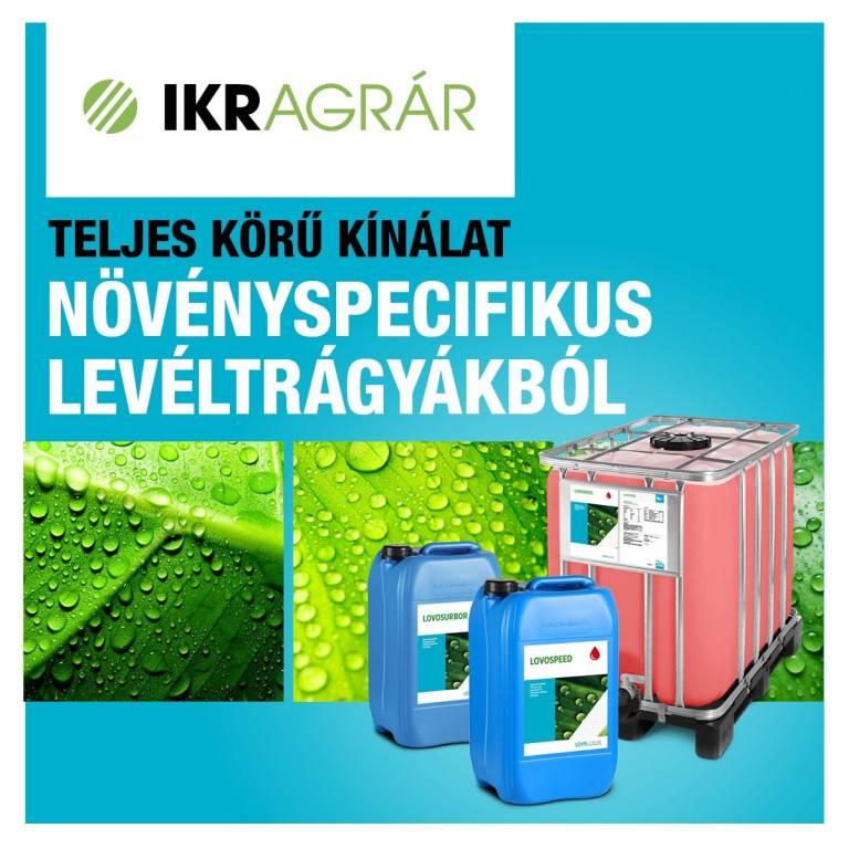 ikr_lombtragyak_ads_1200x1200_v2