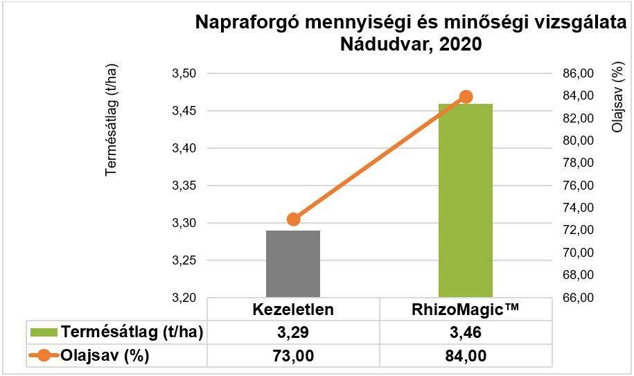 napraforgo-mennyisegi-es-minosegi-vizsgalata