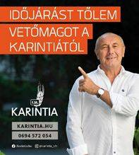 karintia-nemeth-lajos