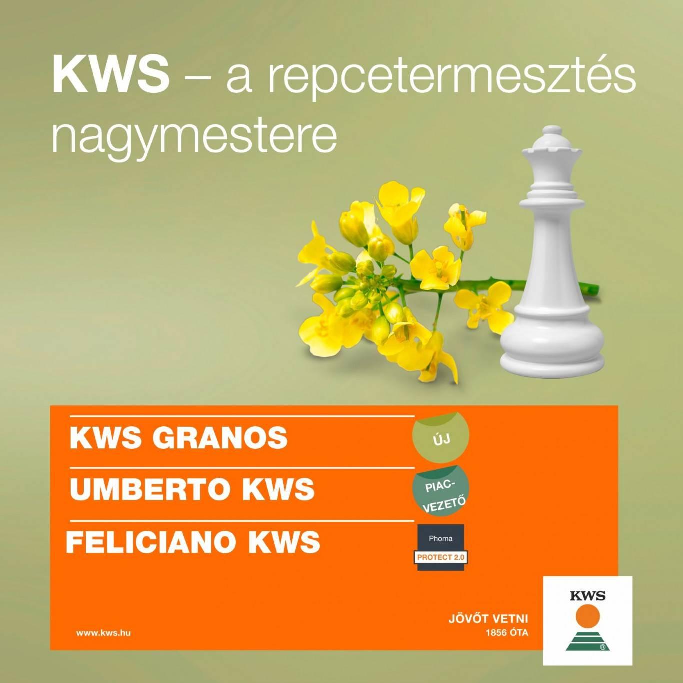 kws-repcek-1667x1667px_1 (002)