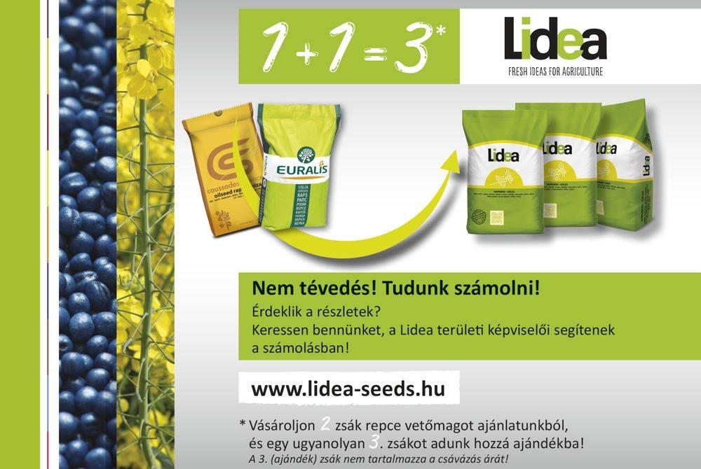lidea-1-meg-1-az-3