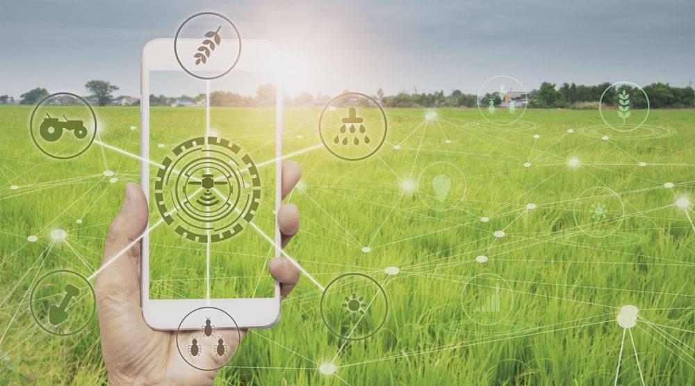 muholdadatok-precizios-digitalizacio-app-telefon-1000